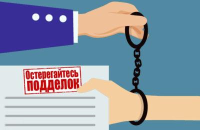 Зафиксированы случаи оформления поддельных документов для получения ЭПТС
